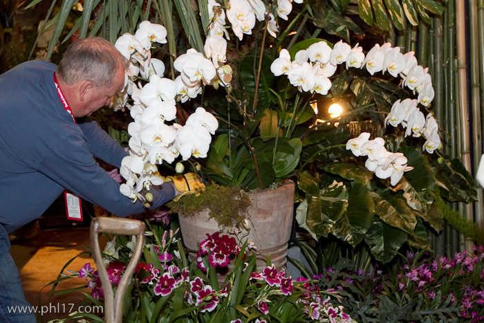 2012 Philadelphia Flower Show-02114653