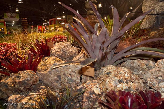 2012 Philadelphia Flower Show-02114724